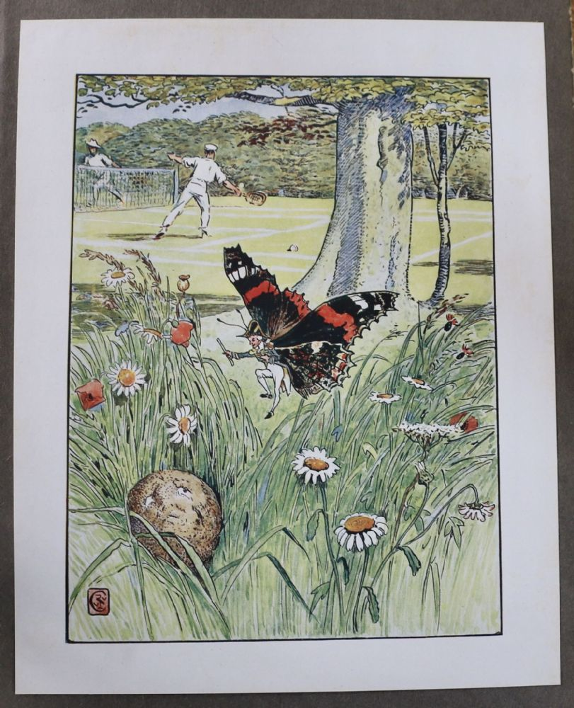 Original 1909 Colour Plates by Walter Crane featuring an Admiral Butterfly